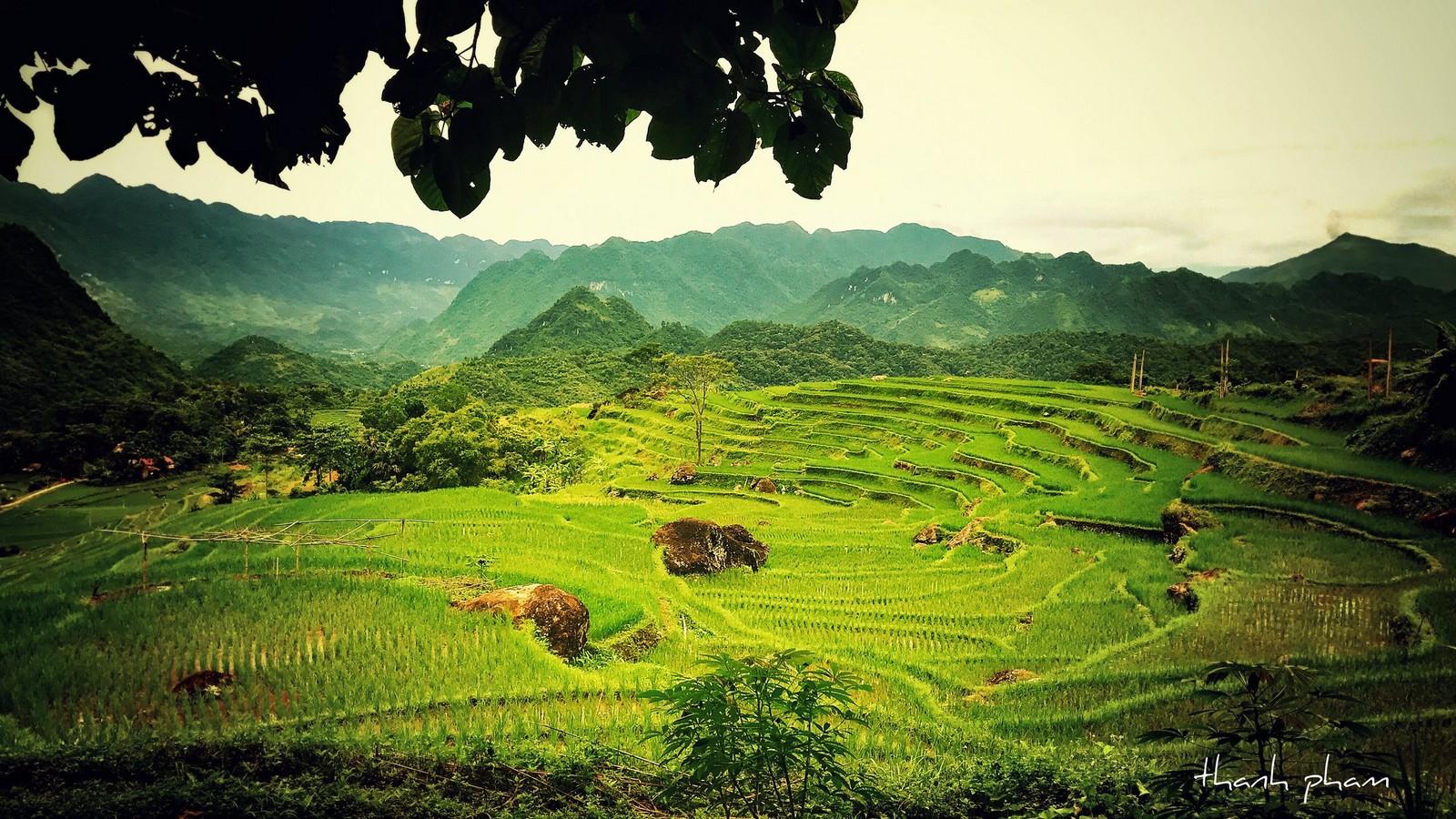 Pu Luong Nature Reserver - Vietnam Trekking Tours